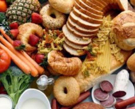 GISA - Effect van dieet op levervet